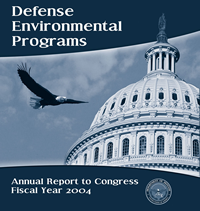 DEP FY 2004 Cover