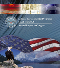 DEP FY 2006 Cover